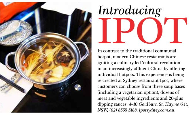 ipot chinese hot pot sbs feast magazine