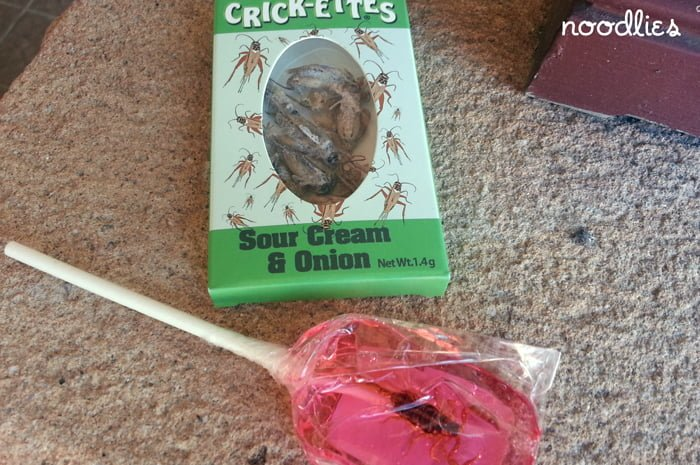 cricket and scorpion snacks