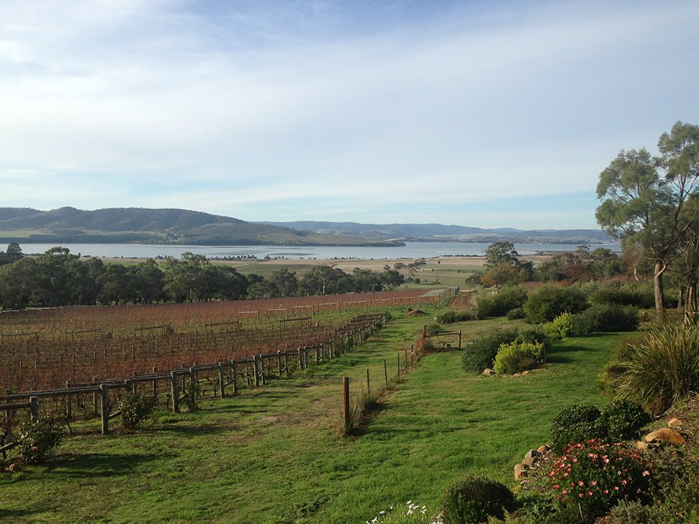 Boutique Wine Tours Tasmania Coal Valley Vineyard Lead